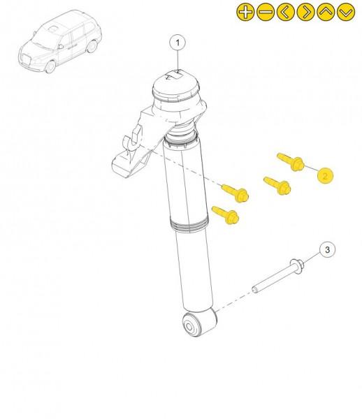 LEVC Schraube mit M10 Gewinde und 40mm Länge